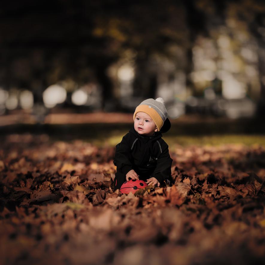 Herbst in der Sedanallee