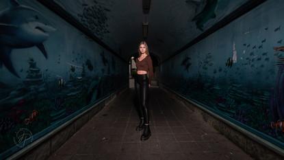 Aquariumtunnel Hildesheim