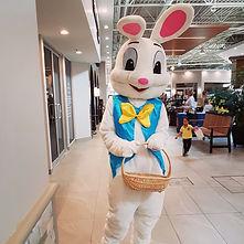 Easter Bunny 3.jpg