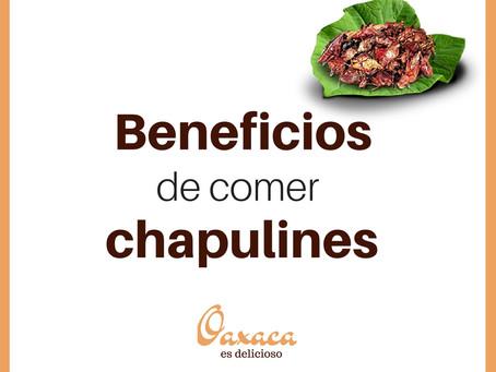 Beneficios de comer chapulines