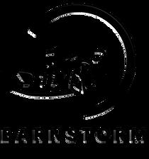 Black on Black Logo Transparent.png