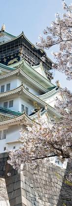 Osaka Castle during Sakura Seaon