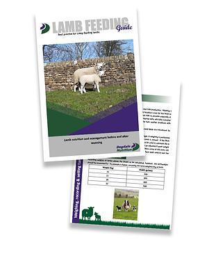 Vertical-Lamb-Feeding.png