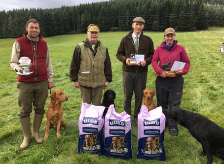 3rd Place, Guns Choice & Best Marking Dog for Tony & FTW Lettergreen Rover...