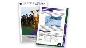 DN Tech Brief; Beef Feeding Guide