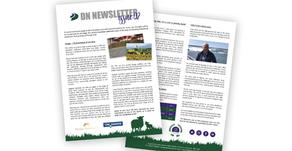 DN Newsletter - Issue 02