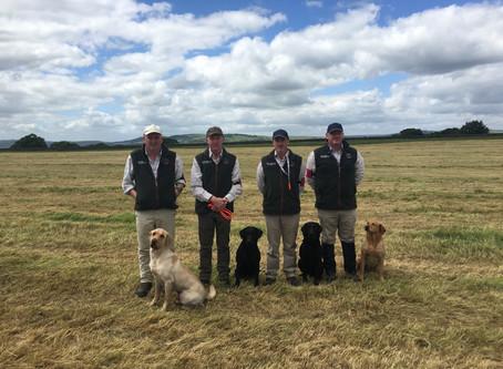 The Irish Gundog Team win The Kennel Club International Working Test 2017