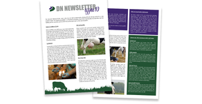 DN Newsletter - Issue 10