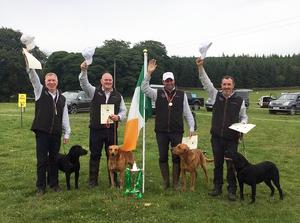 Irish Gundog Team