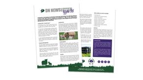 DN Newsletter - Issue 08