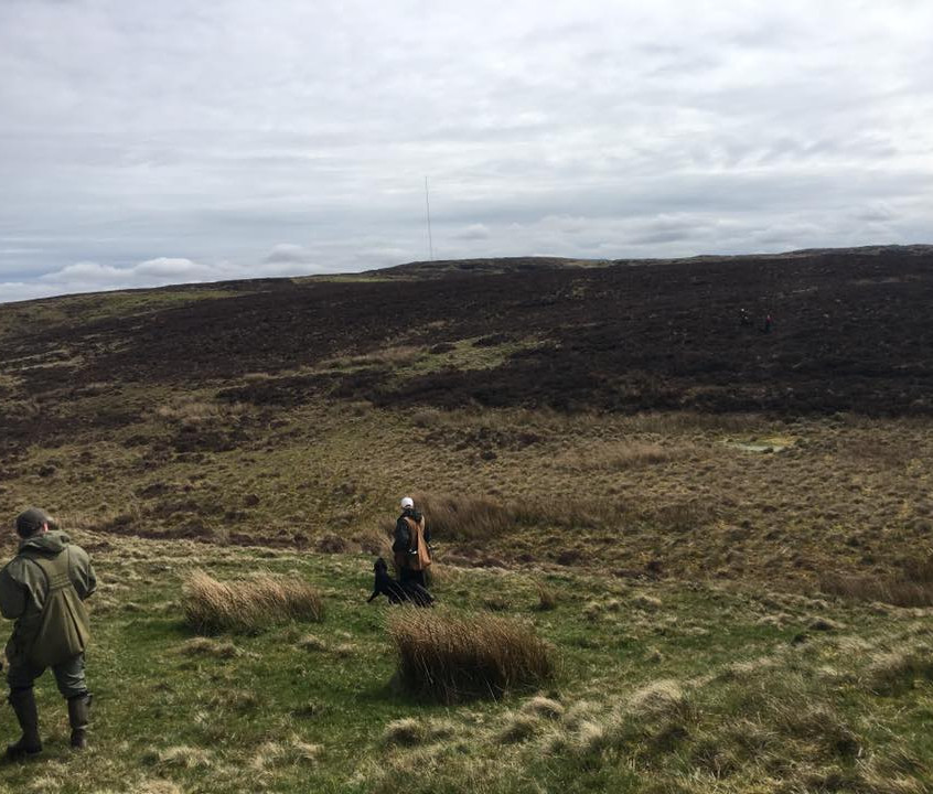 Training on the Mourne Mountains