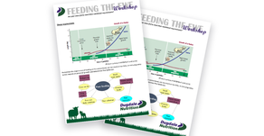 DN Tech Brief; Feeding the Ewe