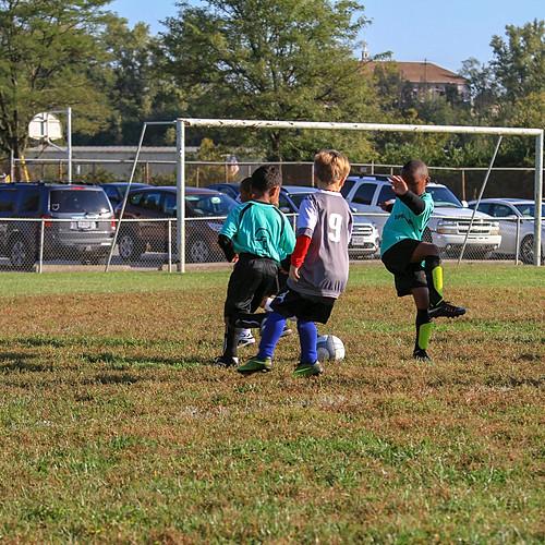 Springdale Soccer