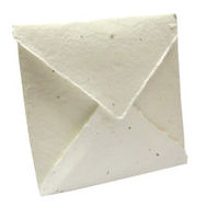 Quad Fold Seed Paper Invitation.jpg
