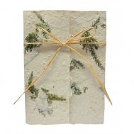 A7 Wrap Seed Paper Invitation.jpg