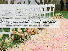 Freeze Dried Pink Rose Petals scattered on ceremony aisle