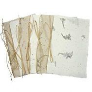 Plantable Seet Paper Programs.jpg