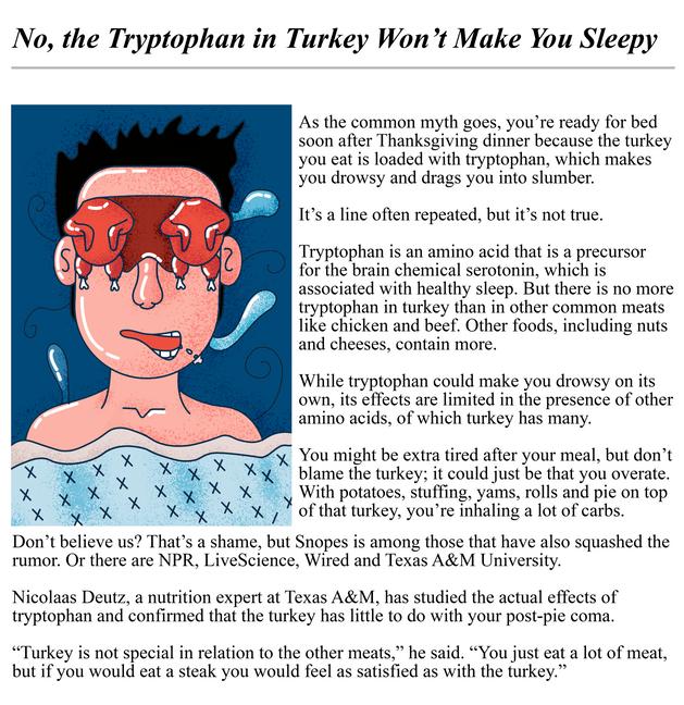 Turkey sleep