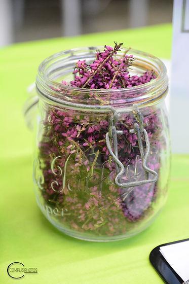 VINCENT Juliette phytothérapie plantes médicinales