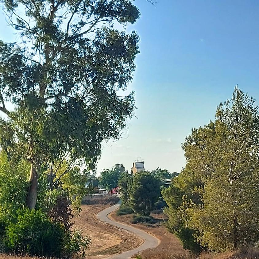 מסלול רומנטי ומוצל בחמדת יער דורות