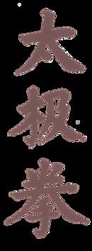 Taiji Quan.png