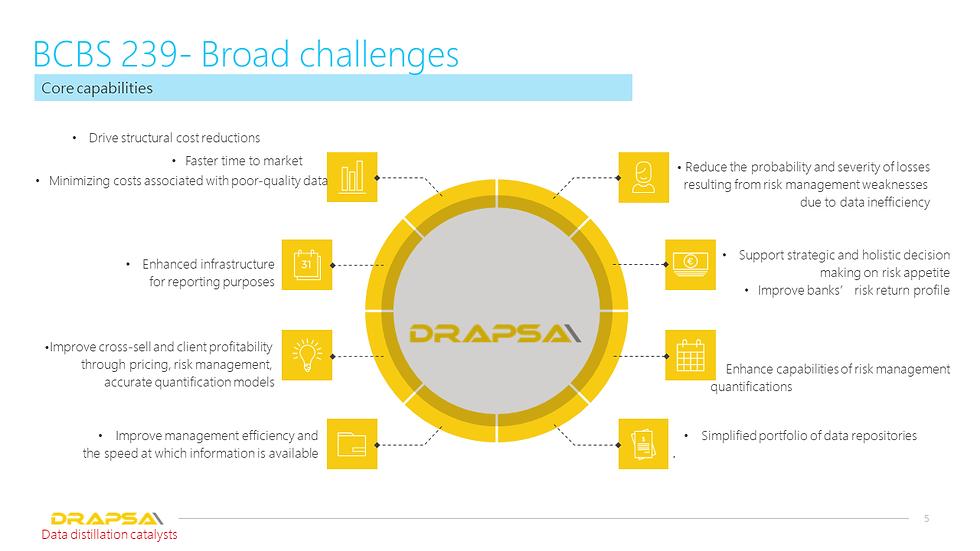BCBS 239- Broad challenges Drapsa addresses