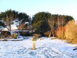 Side garden in Winter