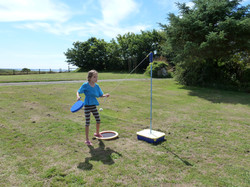 Swing ball on the side lawn