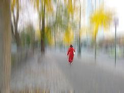 20181108_160250 Red in Autumn.jpg