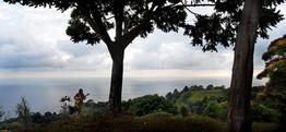 Taylor Lamborn in Costa Rica