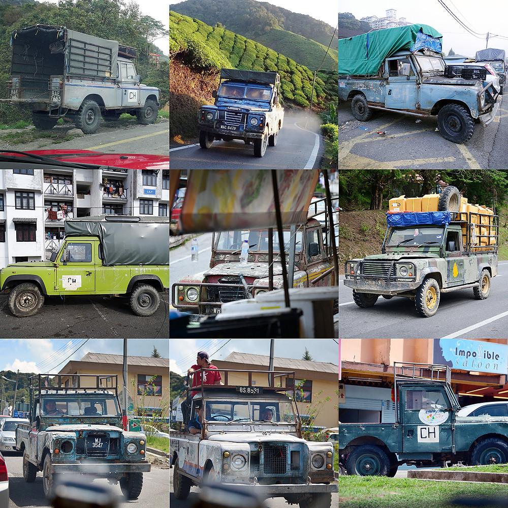 Land Rovers at Cameron Highlands