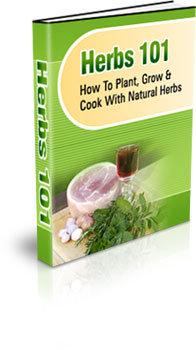 Natural Herbs 101