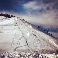competition-ski-albiez