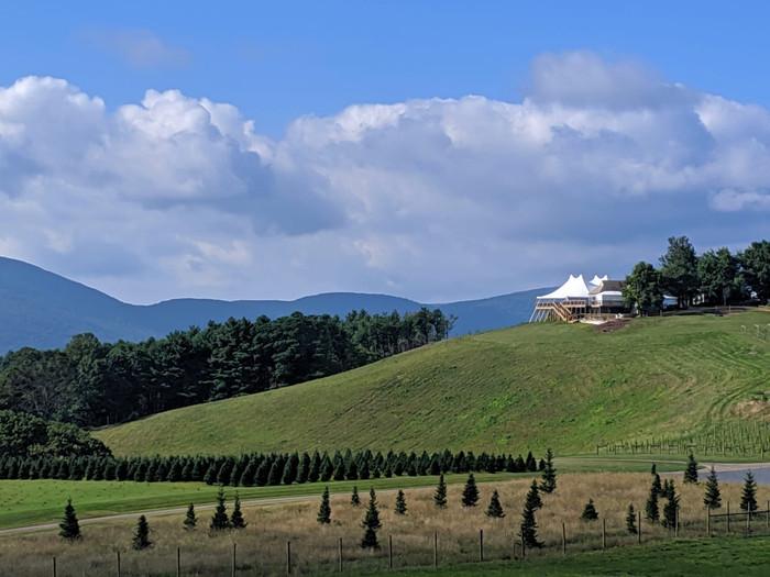 Tent View (2).JPG
