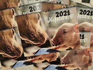 WErbung Kalender.jpg