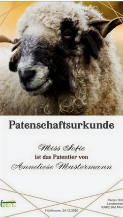 Patenschaftsurkunde%25252520Vorlage_edited_edited_edited_edited.jpg