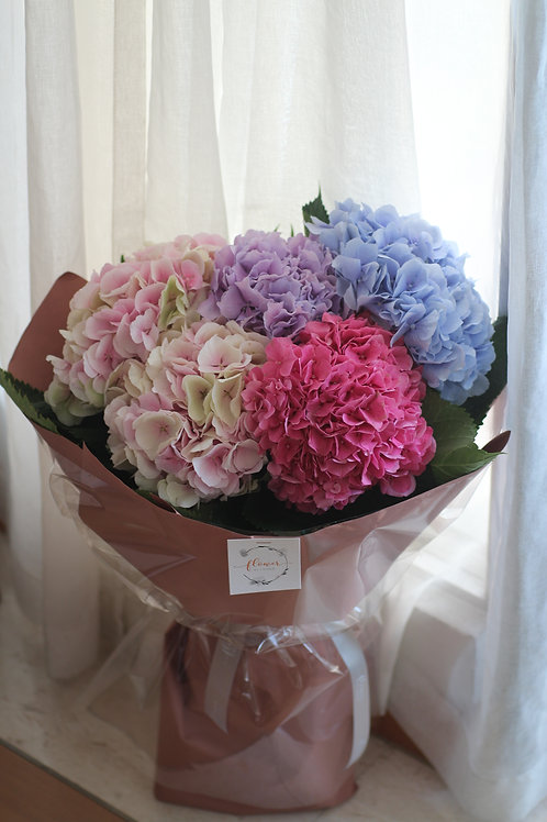 Mother's Day special - Hydrangea deluxe