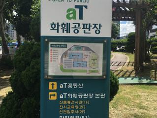首爾 - 花卉市場
