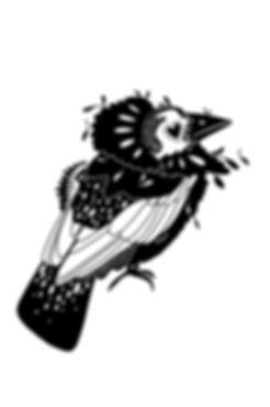 Judgemental bird boy_edited.jpg