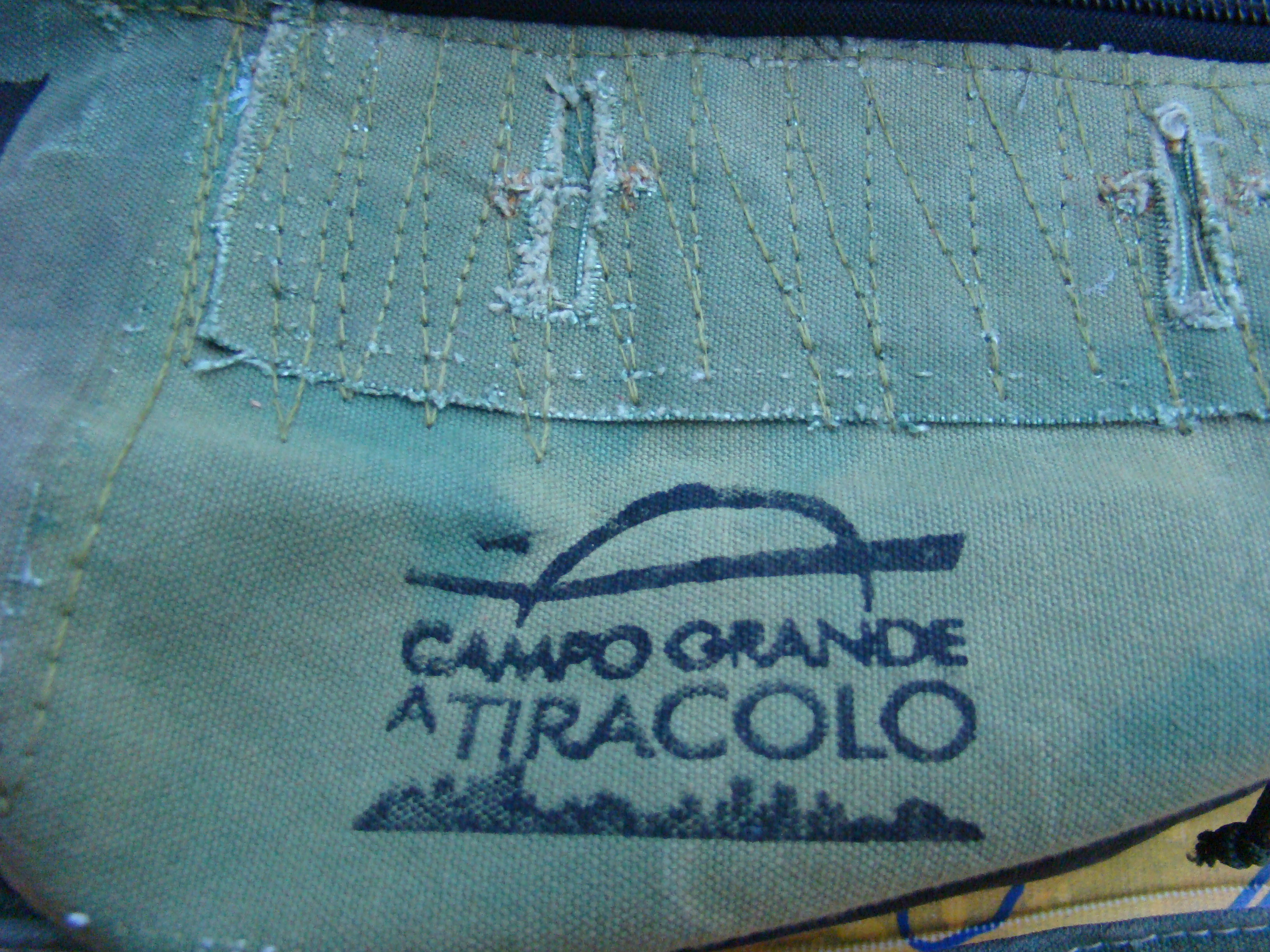 Carimbo logo