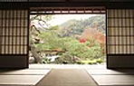 View of Meditation Garden.webp