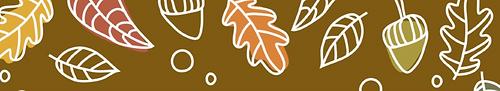 fall fest 2021_edited_edited.png