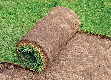 sod-laying-300x200-1.jpg