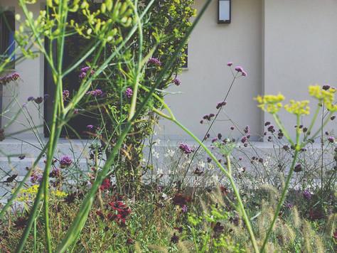atelje ónkraj: vrt po meri uporabnika.