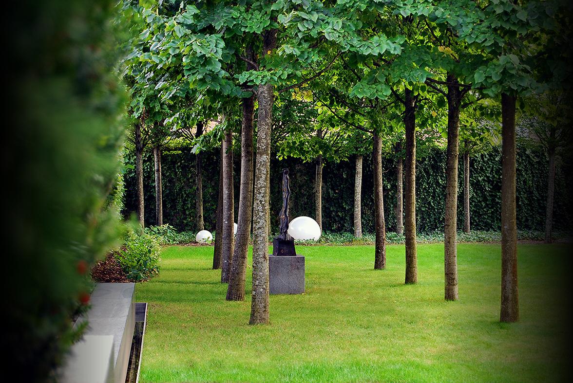 dvojni drevored lip na mestnem vrtu