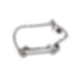 PCF hamster.png