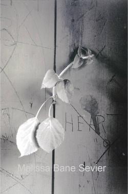 Heart Leaves