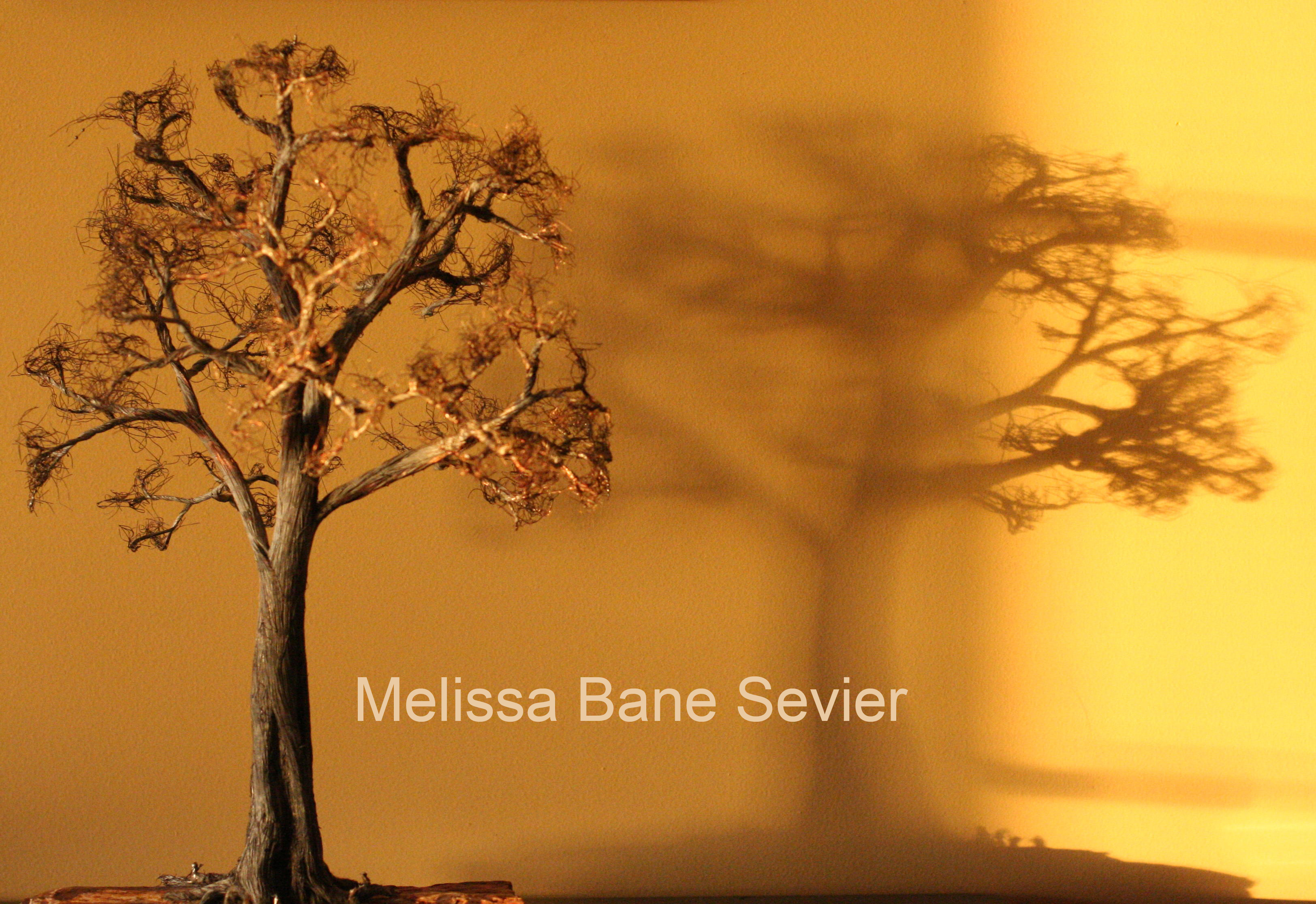 Tree Sculpture and Shadow