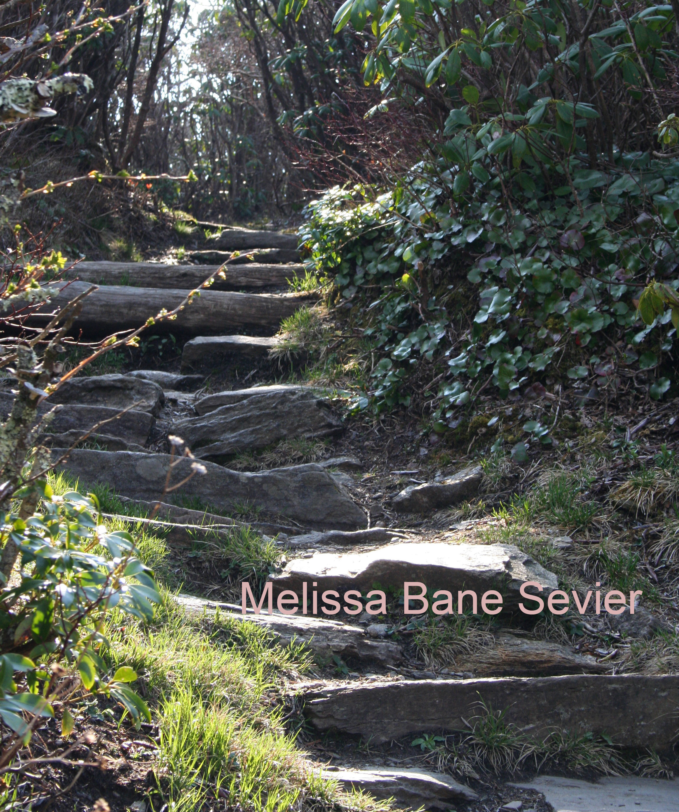 Appalachian Pathway