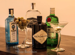 gin pic for bar, LR adjusted, 10-15-17, copyright, low
